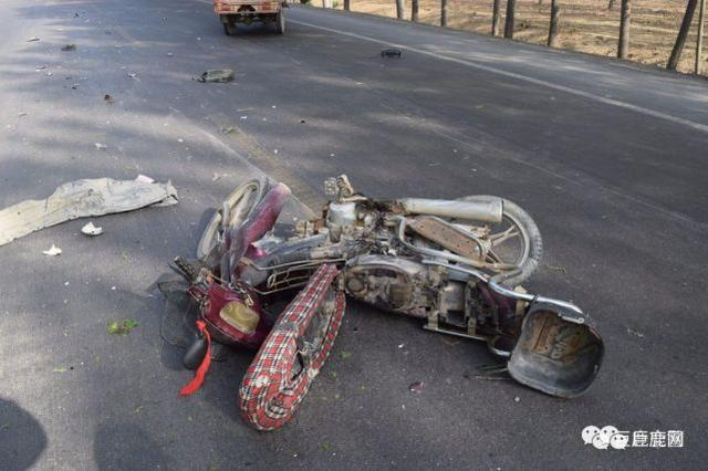 河北巨鹿发生一起交通肇事死亡逃逸案