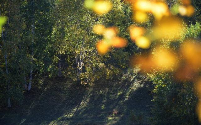 只知道草原天路?河北另一条天路才是美得让人不想走