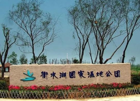 衡水湖景区正式对外营业开放!