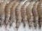 市场监管总局抽检淡水虾:2批次检出禁用抗生素