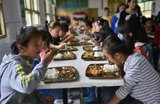 河北:做好农村义务教育学生营养改善工作