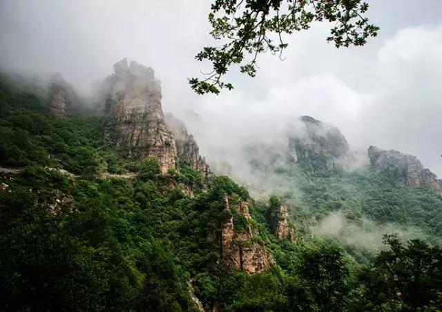白石山 雾气升腾似仙境