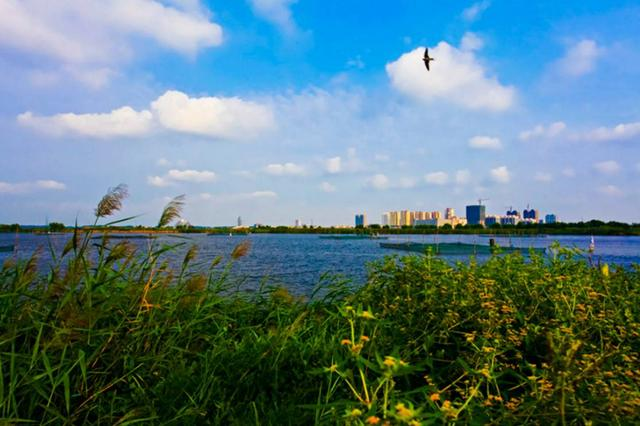 看过这8个地方 你一定会爱上河北的秋天