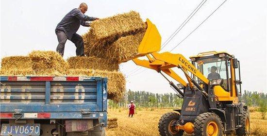 """""""河北小麦大规模机收基本结束"""
