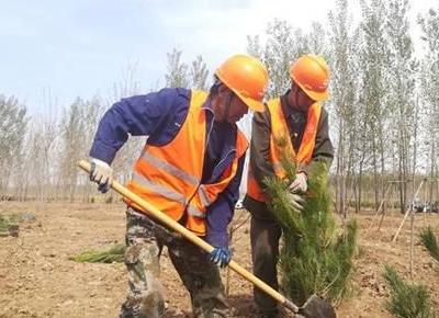 今年河北省完成春季营造林635.3万亩