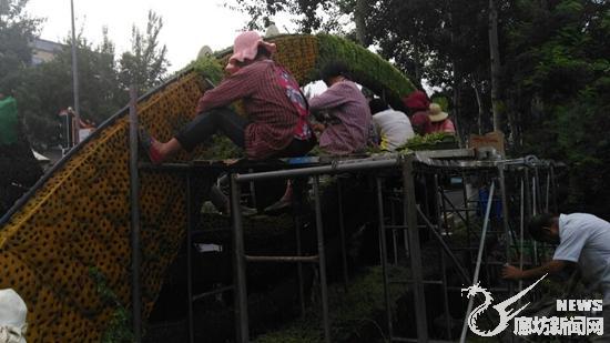 廊坊:花坛锦簇迎盛会 文明城市增亮点