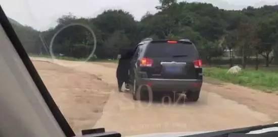 北京八达岭野生动物园猛兽区内,一只马来熊将脑袋伸进了游客车窗,幸未