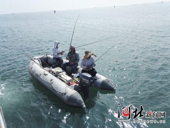 2017-2025年河北省将新建15个国家级海洋攻略广西游网穷牧场图片