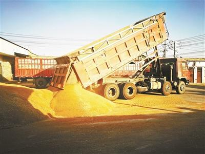 北京法院异地执行万吨小麦案