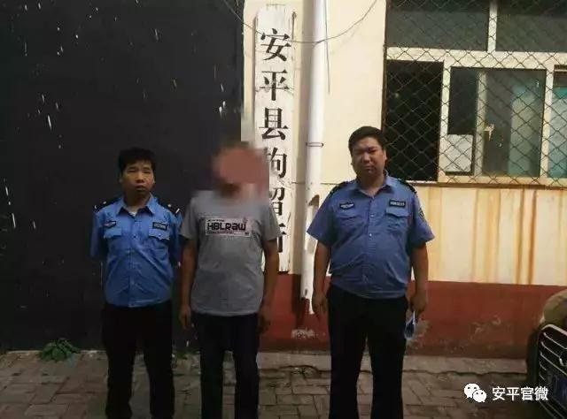 安平又一盗窃观赏花卉人员被依法行政拘留!