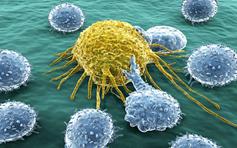 河北4市部分城市居民可免费筛查五种癌症