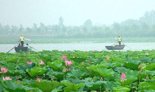 7月河北省水质月报:10座水库水质优