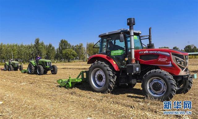 河北深州:用好闲置土地 促进农民增收