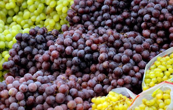 2万斤葡萄被销毁,真是催熟剂惹的祸?