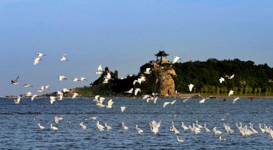 北戴河位于秦皇岛市西南,海滩漫长曲折,沙软潮平,是著名的海滨避暑
