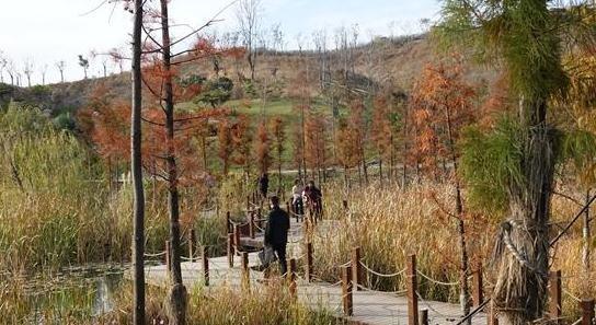 河北邯郸一废弃矿山变生态公园