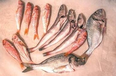 科学研究:每周吃鱼睡眠好
