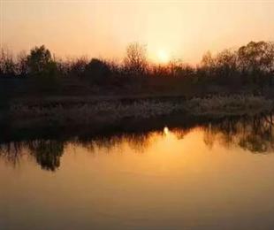 子牙河生态补水后的美景太撩人了!