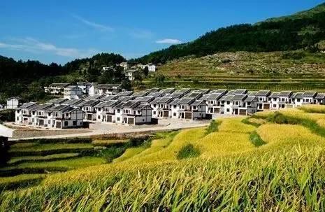 河北农村重大改革!快来看你们村到底怎样改?