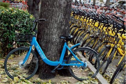 小蓝单车现金流隐忧 押金第三方托管是假?