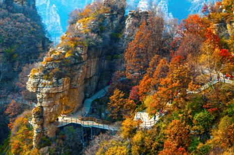 """醉在童话之秋,白石山不可错过的""""红桦节"""""""