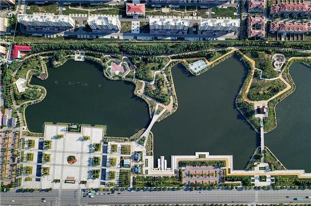 河北黄骅:城市荒地变身生态公园