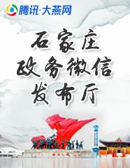 石家庄政务微信发布厅