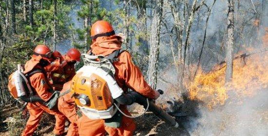卢龙县4.22山火已全部扑灭