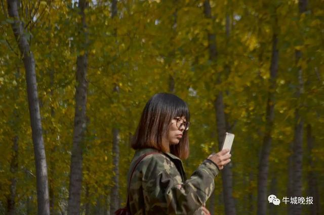 邢台郊外这片林子,秋景美过九寨沟!
