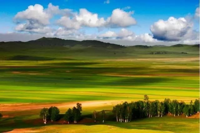 天然名苑――塞罕坝国家森林公园