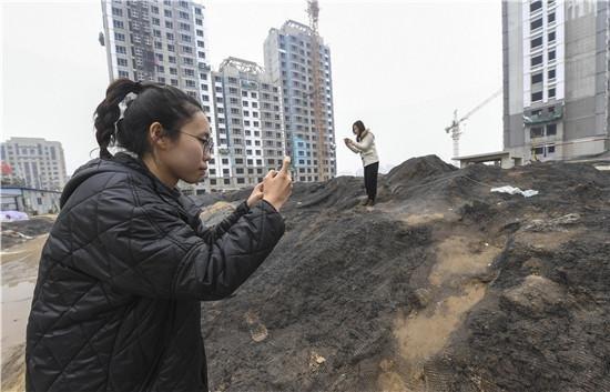 """治理大气污染 河北省""""铁拳""""办案1368起"""