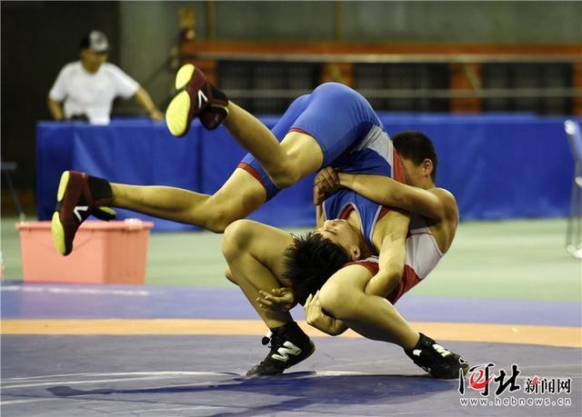 河北省第十五届运动会青少年自由式摔跤落幕