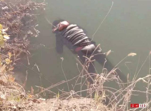 发现动物公园透明的水