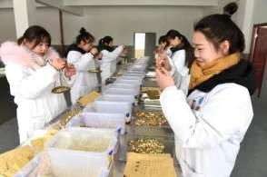 河北省职业教育年均培训近140万人次