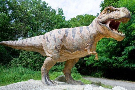 【8.26--27日】嗨玩恐龙园 疯狂动物城,周末全家总动员,走起!