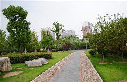合肥绿轴公园平面图
