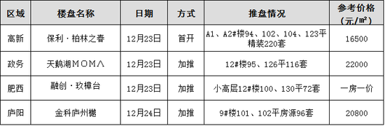 周末四盘入市 2号线西端首发站纯新盘首开精装16500元/平