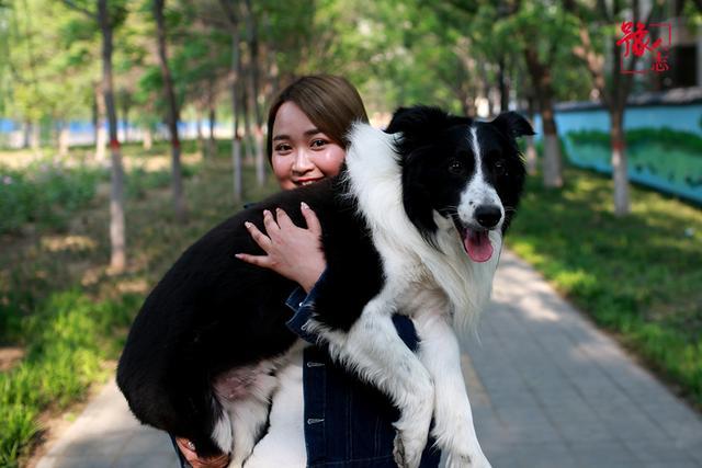 豫人志:90后女孩偶然当上遛狗师 称出于喜欢