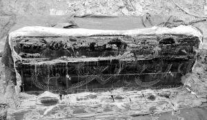 河南首次出土汉四神图漆棺 尘封两千年保存完好
