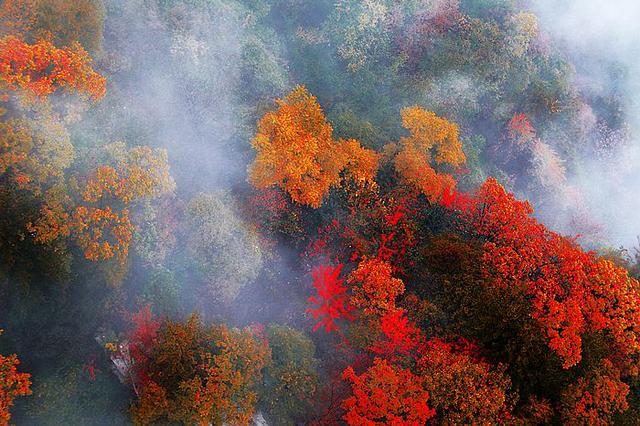 尧山红叶已浓,踏秋寻梦正当时