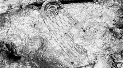 河南首次微博直播考古 12秒视频播放近900万次