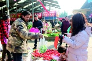 三门峡留守城市的买菜人 从凌晨到深夜搬运蔬菜上千斤