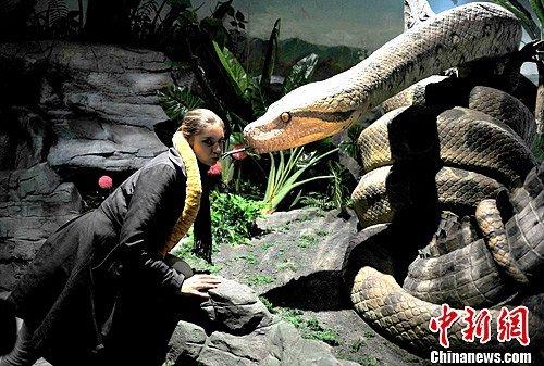 """图库频道 正文    27日,广州长隆野生动物世界专为蛇年打造的蛇园"""""""