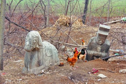 河南2吨多重明代石马被盗 村民悬赏抓贼