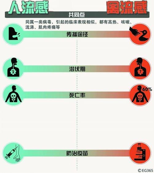 H7N9禽流感死亡率可达60% 河南暂未发现病例
