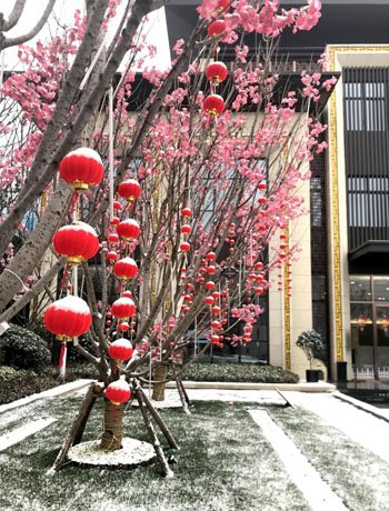 建业春天里展示中心雪景