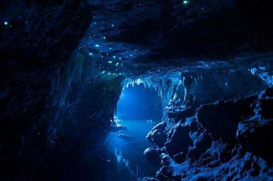 洞内萤火虫美如夜空繁星