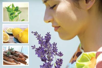 薄荷能减轻头痛!公布8种香味有益健康