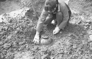 扶沟县发现6000年前文化遗址 将进行考古试掘