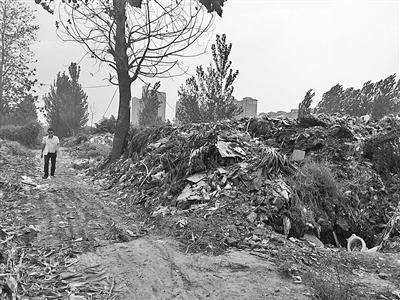 新乡一村庄附近有足球场大垃圾山 常年无人清扫